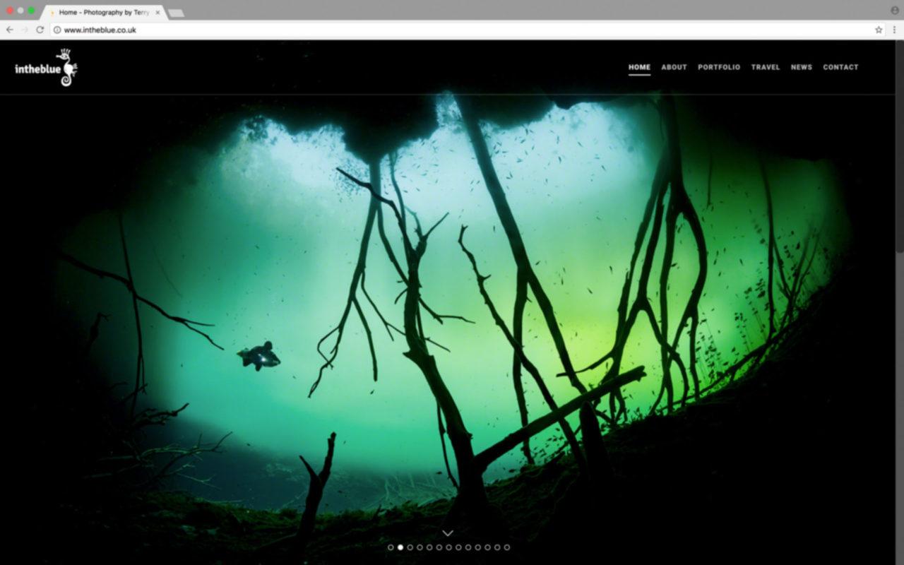 Image of intheblue website