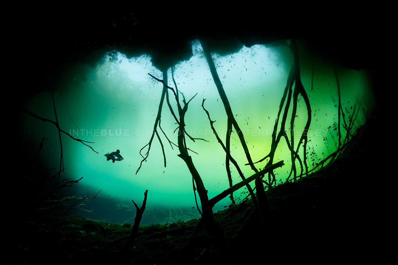 Cenote Aktun Ha